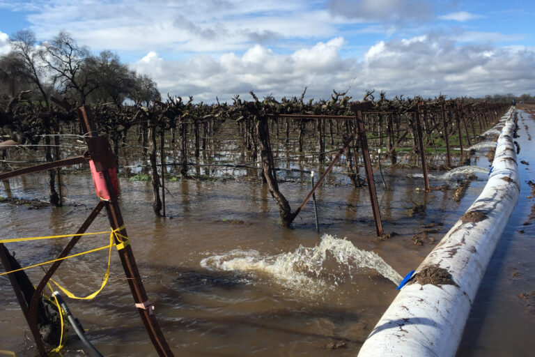 Identifying the Potential and Impacts of On-Farm Groundwater Recharge
