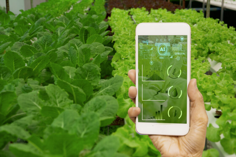 Can Artificial Intelligence Enhance the Profit and Environmental Sustainability of Agriculture?
